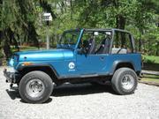 1993 Jeep Jeep Wrangler YJ